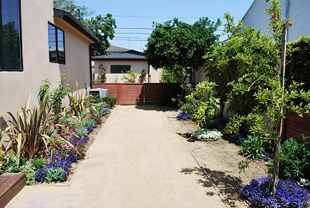 Landscaping And Pool Design 1, Landscape Design Los Angeles Pool Design,  Ivory CND